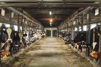 畜産・農地